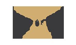 Bird of Fire Logo