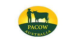 Pacow BBQ Logo